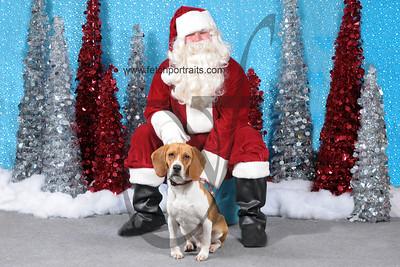 Dogaholics Santa 2013 441