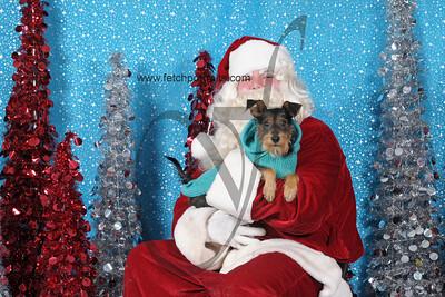 Dogaholics Santa 2013 413
