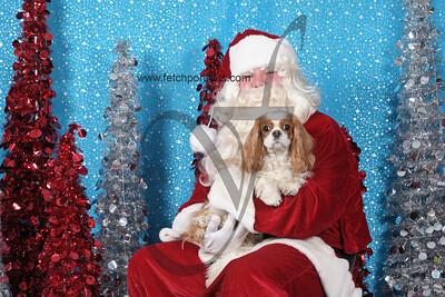 Dogaholics Santa 2013 407