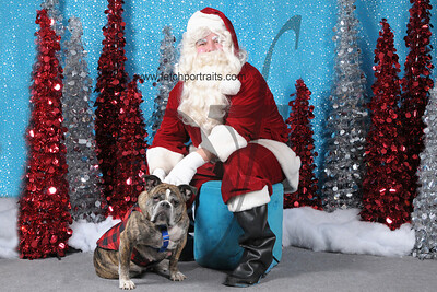 Dogaholics Santa 2013 244