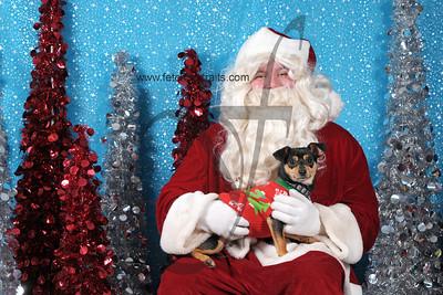 Dogaholics Santa 2013 Sunday 318