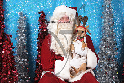 Dogaholics Santa 2013 Sunday 274