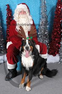 Dogaholics Santa 2013 Sunday 157