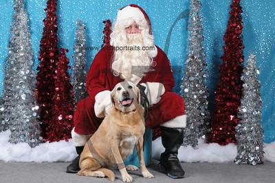 Dogaholics Santa 2013 Sunday 109