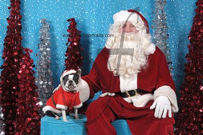 Dogaholics Santa 2013 Sunday 033