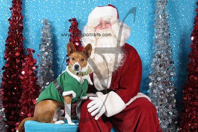 Dogaholics Santa 2013 Sunday 237