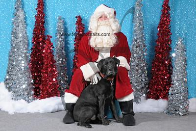 Dogaholics Santa 2013 Sunday 299