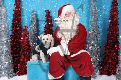 Dogaholics Santa 2013 Sunday 210