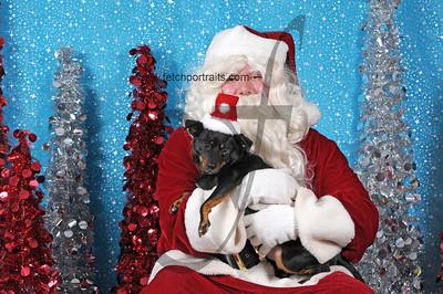 Dogaholics Santa 2013 Sunday 290