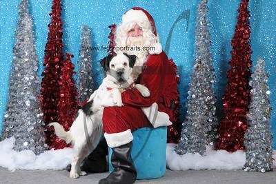 Dogaholics Santa 2013 Sunday 127