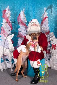 dogaholics_santa_2014 004