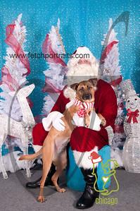 dogaholics_santa_2014 002
