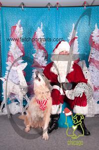dogaholics_santa_2014 030