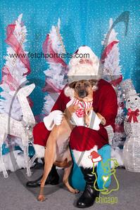 dogaholics_santa_2014 001