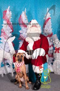 dogaholics_santa_2014 005
