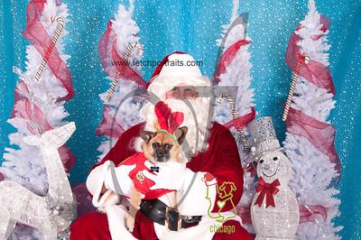 dogaholics_santa_2014 020