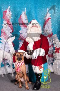 dogaholics_santa_2014 006
