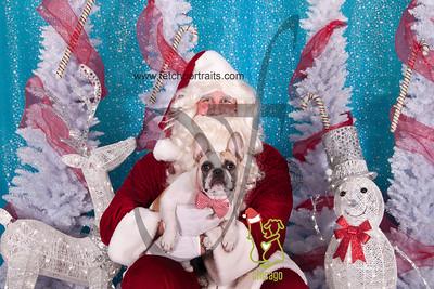 dogaholics_santa_2014 215_1