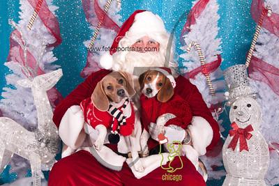 dogaholics_santa_2014 150_1