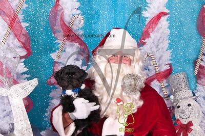 dogaholics_santa_2014 071_1