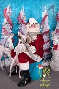 dogaholics_santa_2014 128_1