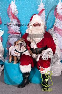 dogaholics_santa_2014 179_1