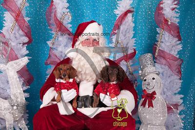 dogaholics_santa_2014 024