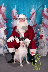 dogaholics_santa_2014 011