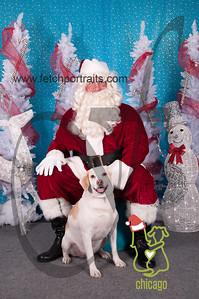 dogaholics_santa_2014 013