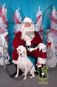 dogaholics_santa_2014 007