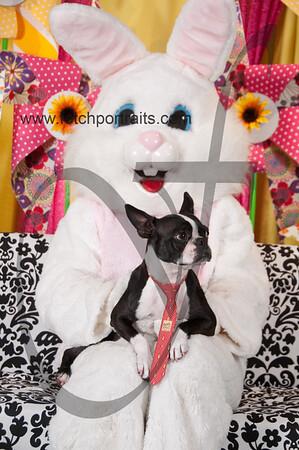 Easter2016_Dogaholics 250