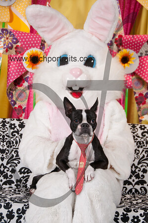 Easter2016_Dogaholics 249