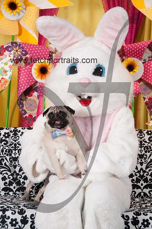 Easter2016_Dogaholics 212