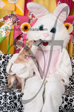 Easter2016_Dogaholics 232