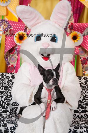 Easter2016_Dogaholics 247