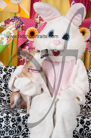 Easter2016_Dogaholics 231