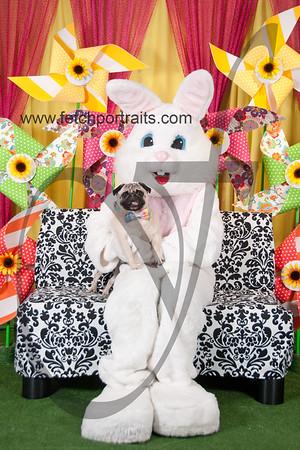 Easter2016_Dogaholics 210