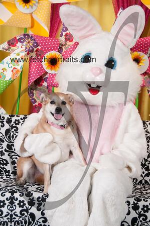 Easter2016_Dogaholics 227