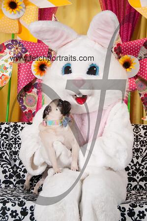 Easter2016_Dogaholics 216