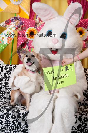 Easter2016_Dogaholics 234
