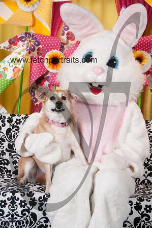 Easter2016_Dogaholics 229