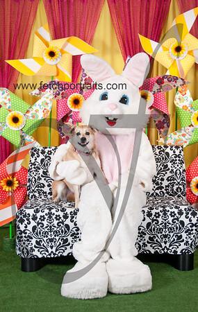 Easter2016_Dogaholics 224