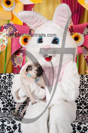 Easter2016_Dogaholics 218