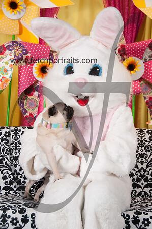 Easter2016_Dogaholics 217