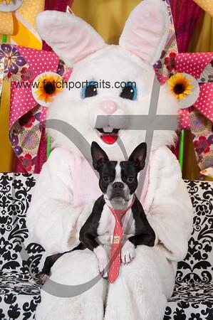 Easter2016_Dogaholics 252