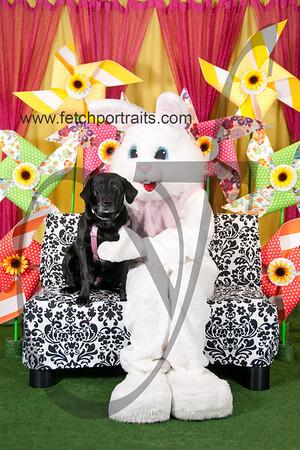 Easter2016_Dogaholics 193