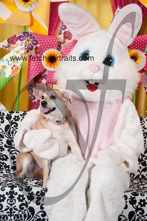 Easter2016_Dogaholics 228