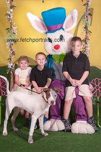 cocos canine cabana ebunny 2015 044