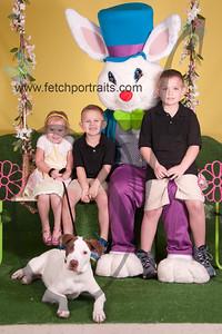 cocos canine cabana ebunny 2015 049