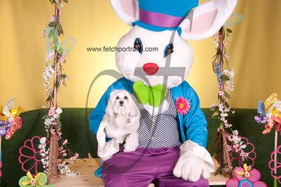 Krisers_Easter_Lakeview_Kildeer_Vernon_Hills_2015 296